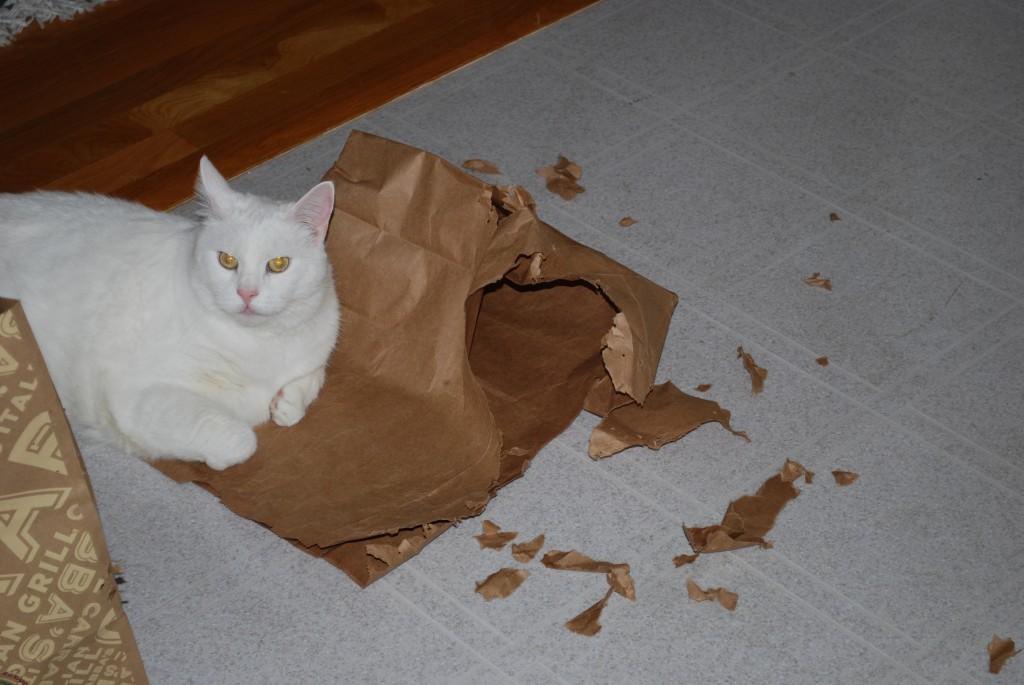 Mugga ripped bag